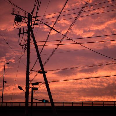 「夕暮れと電柱のシルエット」の写真素材