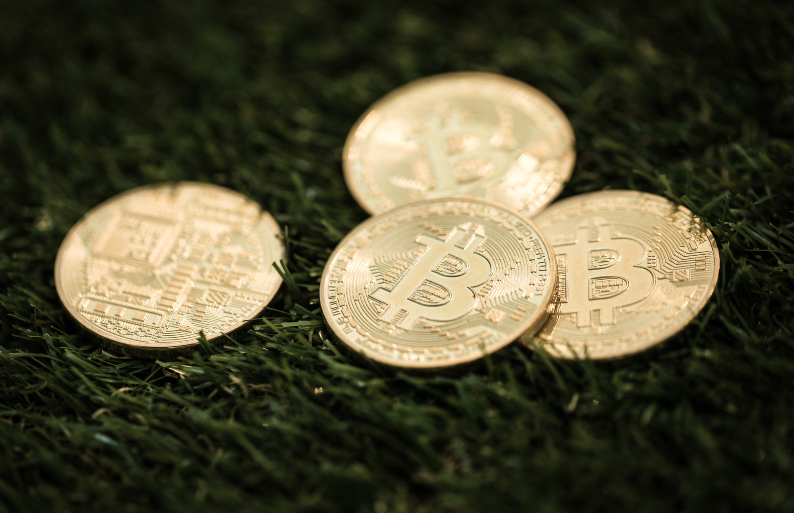 「ビットコインメダル」の写真