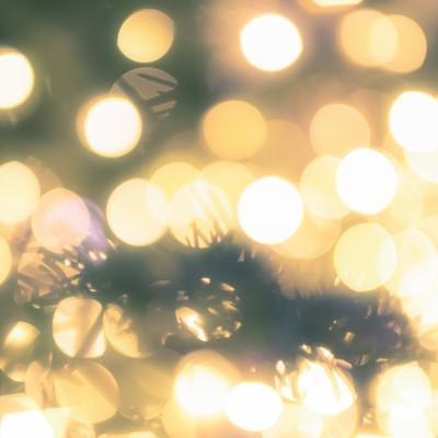 「クリスマスツリーとイルミネーション」の写真素材