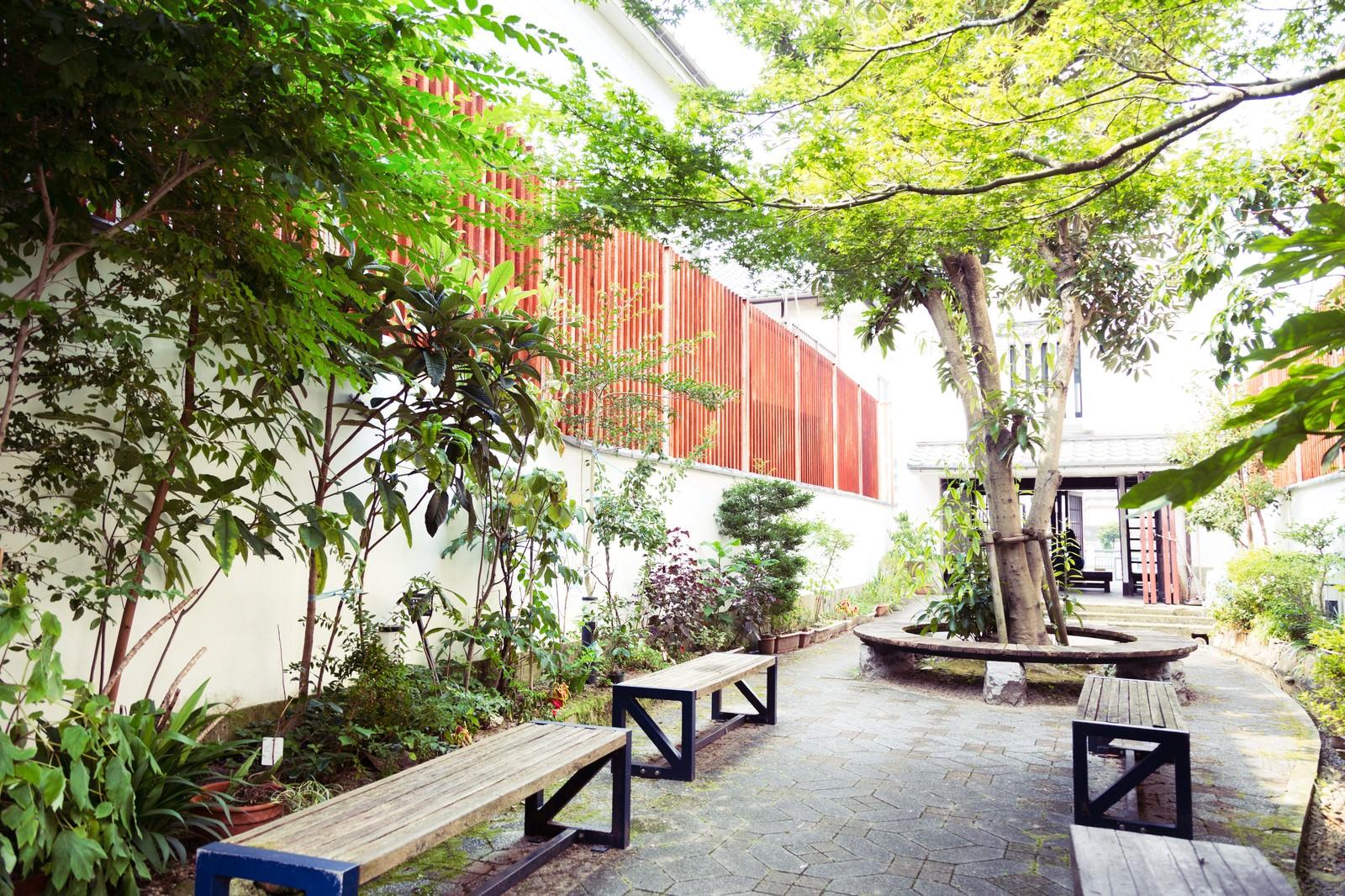 「生い茂る古伊万里公園」の写真