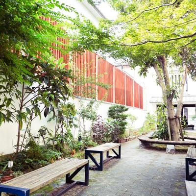 「生い茂る古伊万里公園」の写真素材