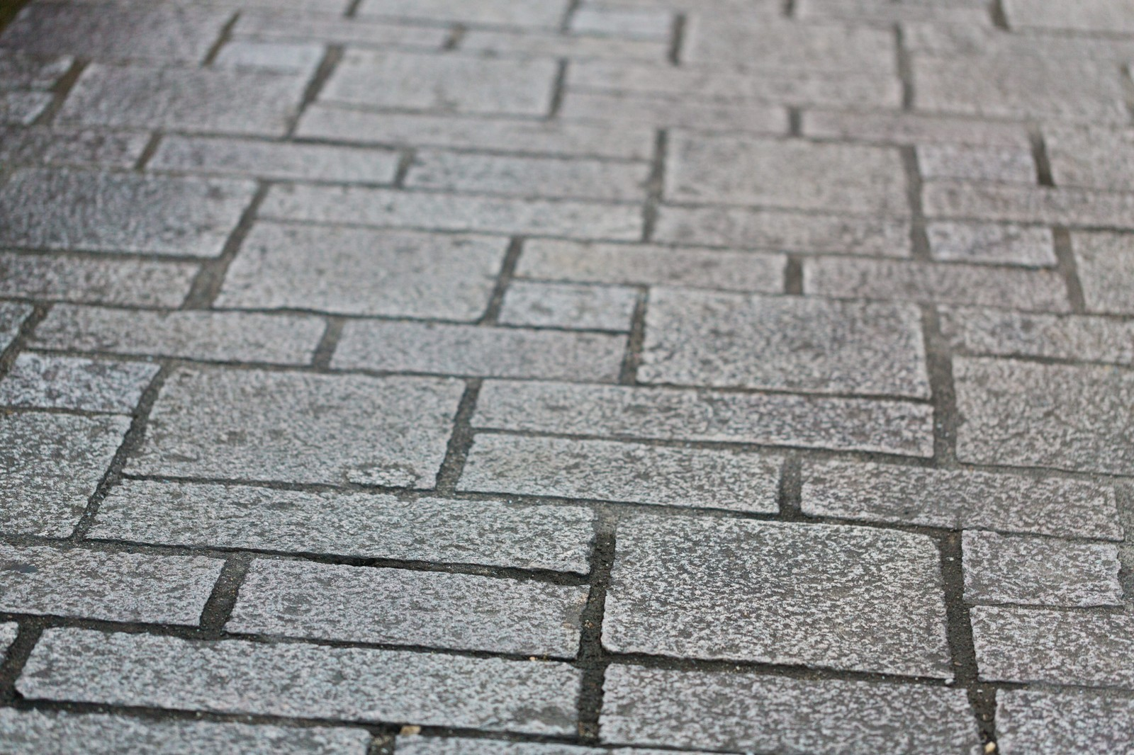 「大川内山の石畳」の写真
