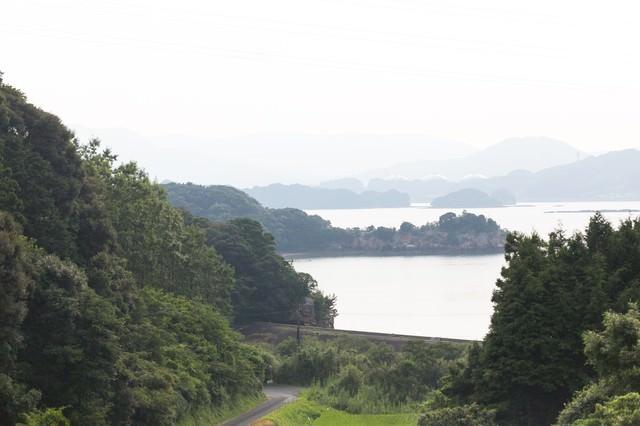 山から見える伊万里湾の眺めの写真