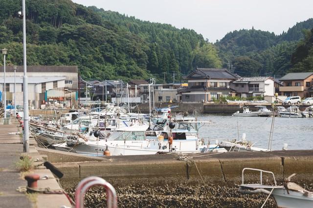 佐賀県伊万里市の波多津港と漁船の写真