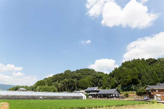 ビニールハウスと民家の写真