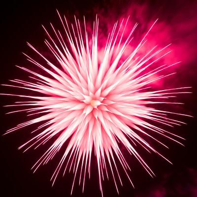 「ピントリングを回して撮影したイソギンチャク花火」の写真素材