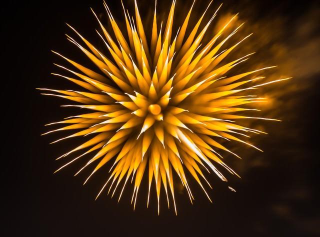 夜空に咲く黄色いたんぽぽの花火の写真