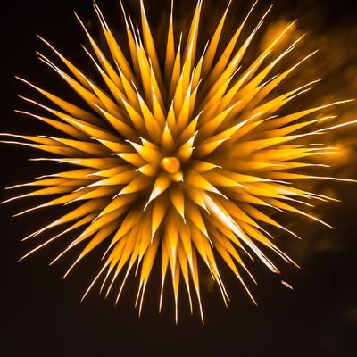 「夜空に咲く黄色いたんぽぽの花火」の写真素材