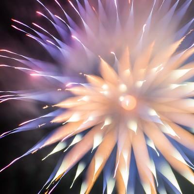 「やわらかい暖色のゆるふわ花火」の写真素材