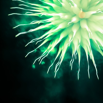 夜空に浮かぶ緑色のモンスター花火の写真