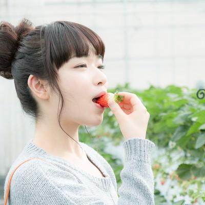 「甘いいちごにご満悦の女性」の写真素材