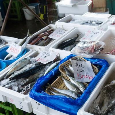 「新鮮な魚が並ぶ港の朝市」の写真素材