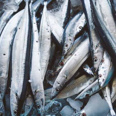 朝市の秋刀魚の写真
