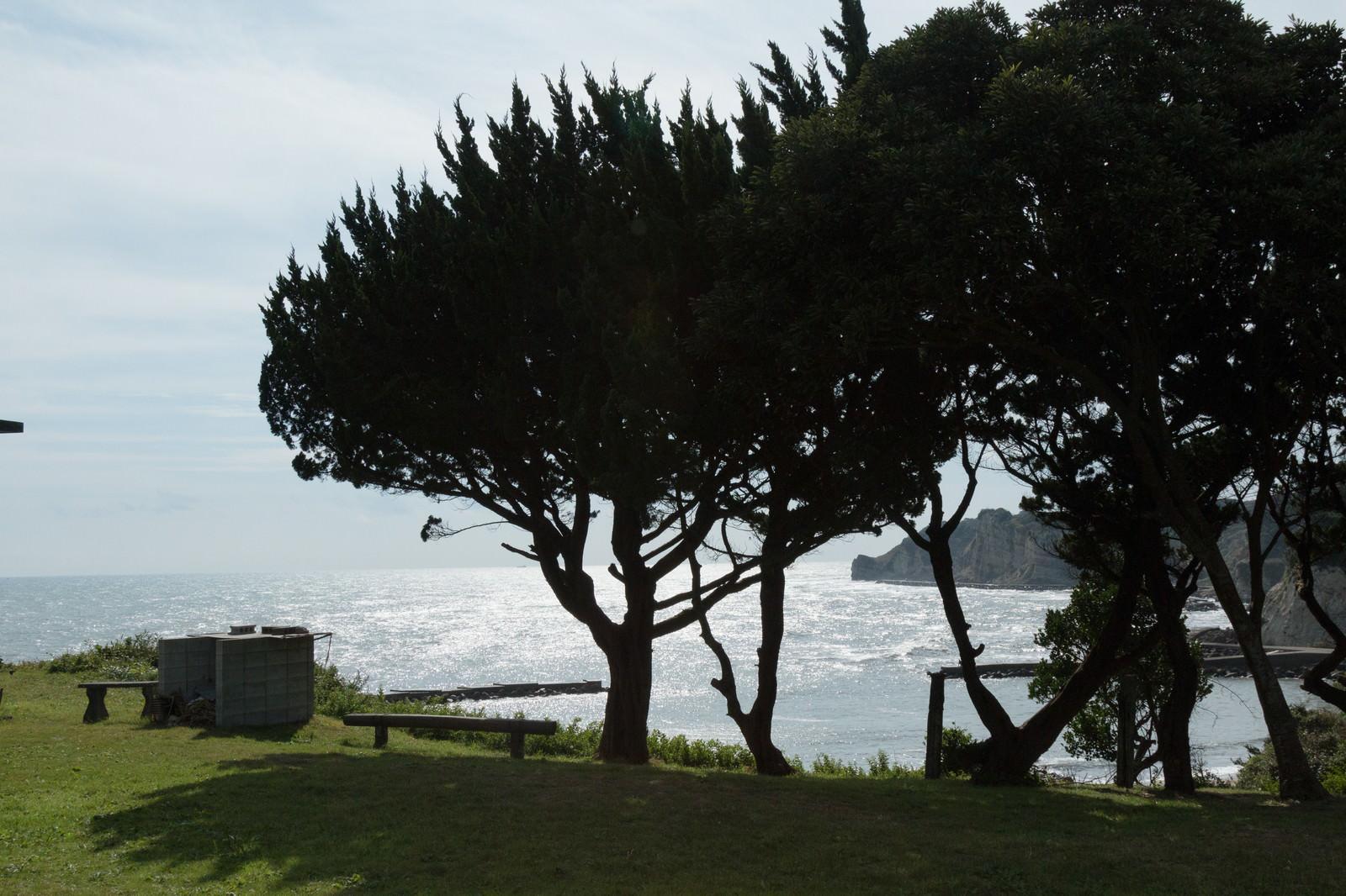 「いすみ市小浜城跡からの景観」の写真