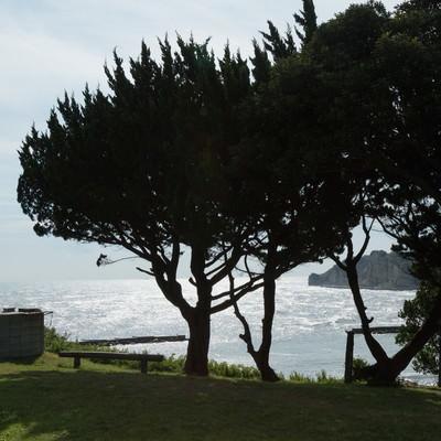 「いすみ市小浜城跡からの景観」の写真素材