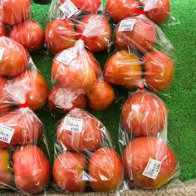 真っ赤に熟したいすみ市大原産のトマトの写真