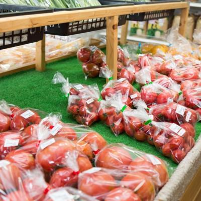 「ふれあい市場に陳列されたブロガーに人気のトマト」の写真素材