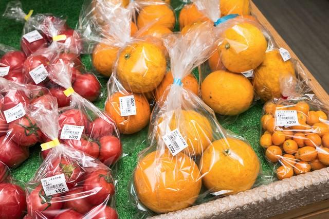採れたてのいすみ市大原産のミニトマトとみかんの写真