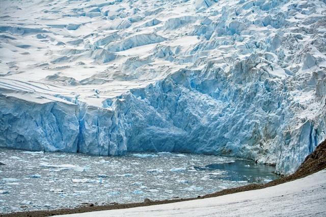 ニコハーバーの巨大氷河の写真
