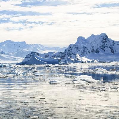 南極の風景の写真