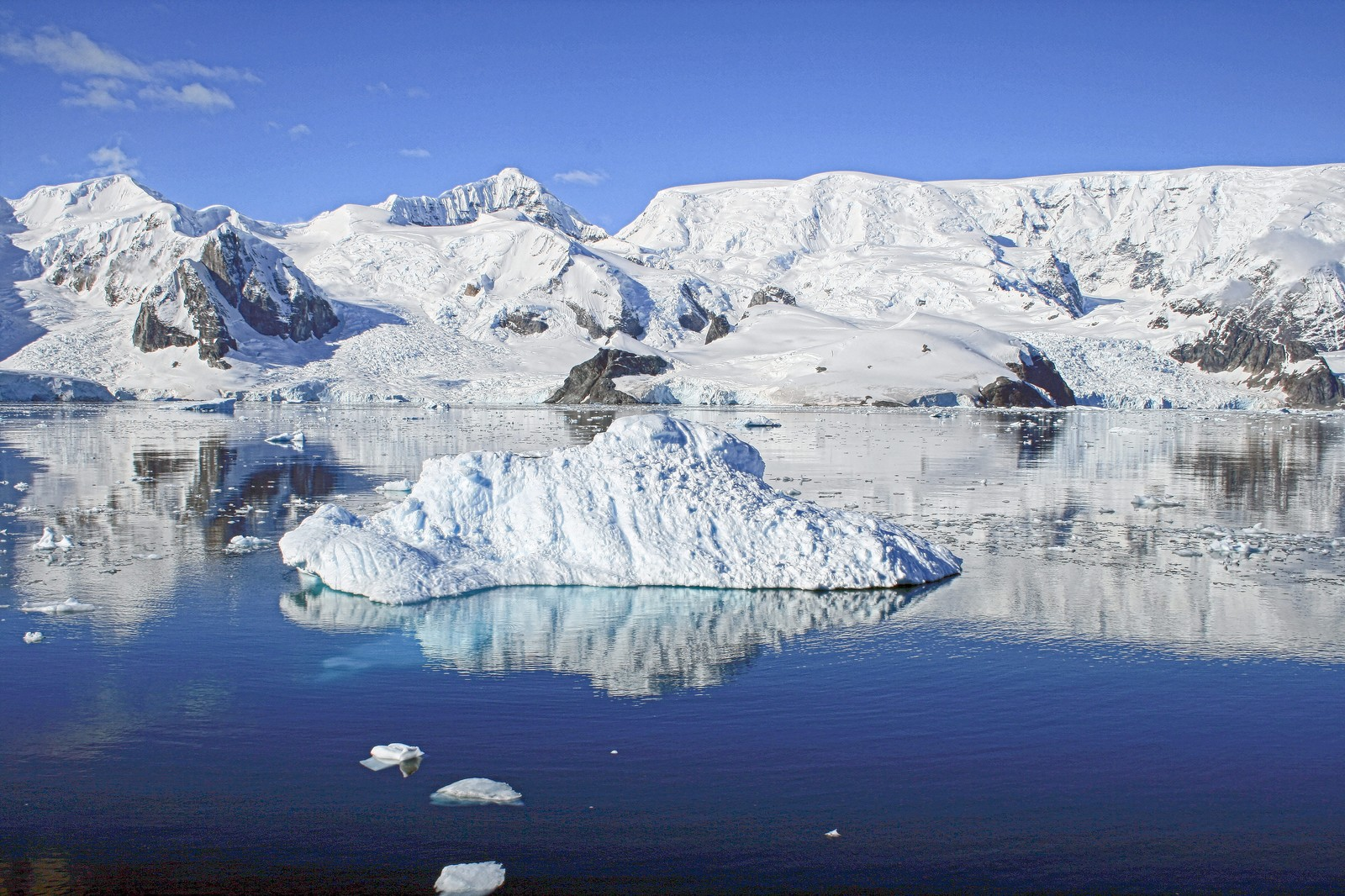 「パラダイスベイの流氷」の写真