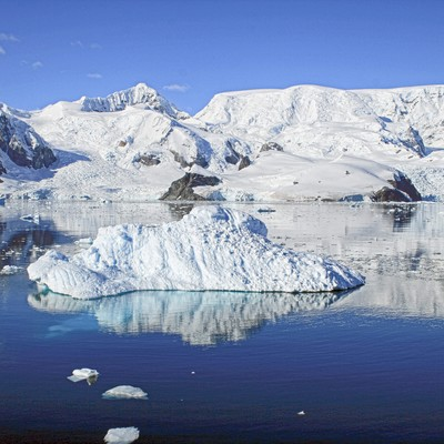 パラダイスベイの流氷の写真