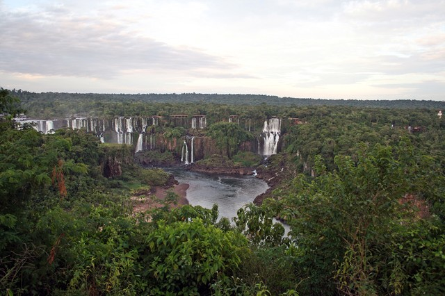 ジャングルに流れるイグアスの滝の写真
