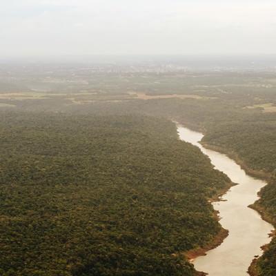 イグアスの滝と樹海の写真