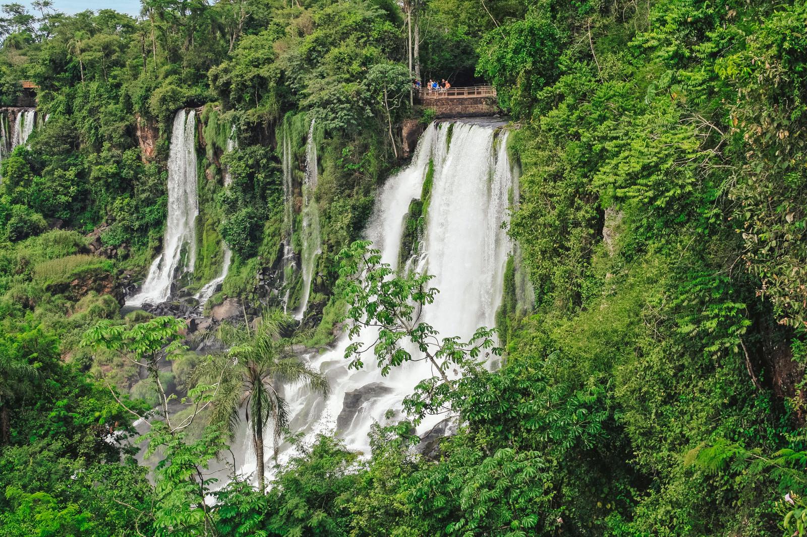 「自然に囲まれたイグアスの滝と観光客」の写真