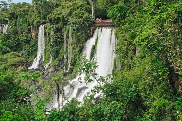 自然に囲まれたイグアスの滝と観光客の写真