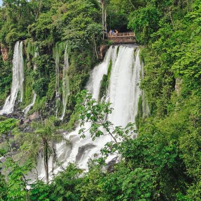 「自然に囲まれたイグアスの滝と観光客」の写真素材