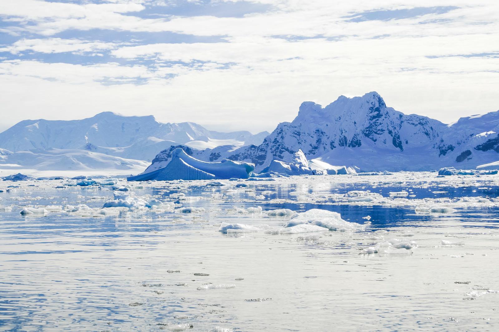 「無数に浮かぶ流氷(南極大陸)」の写真