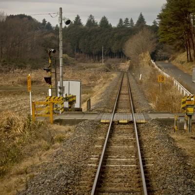 「田舎の道と線路」の写真素材