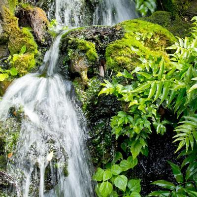 「岩場を流れる水」の写真素材