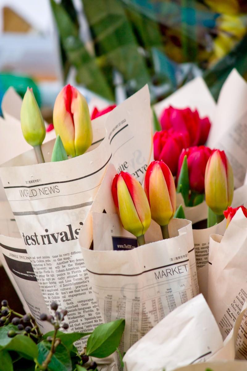 「英文の新聞に包まれた花」の写真