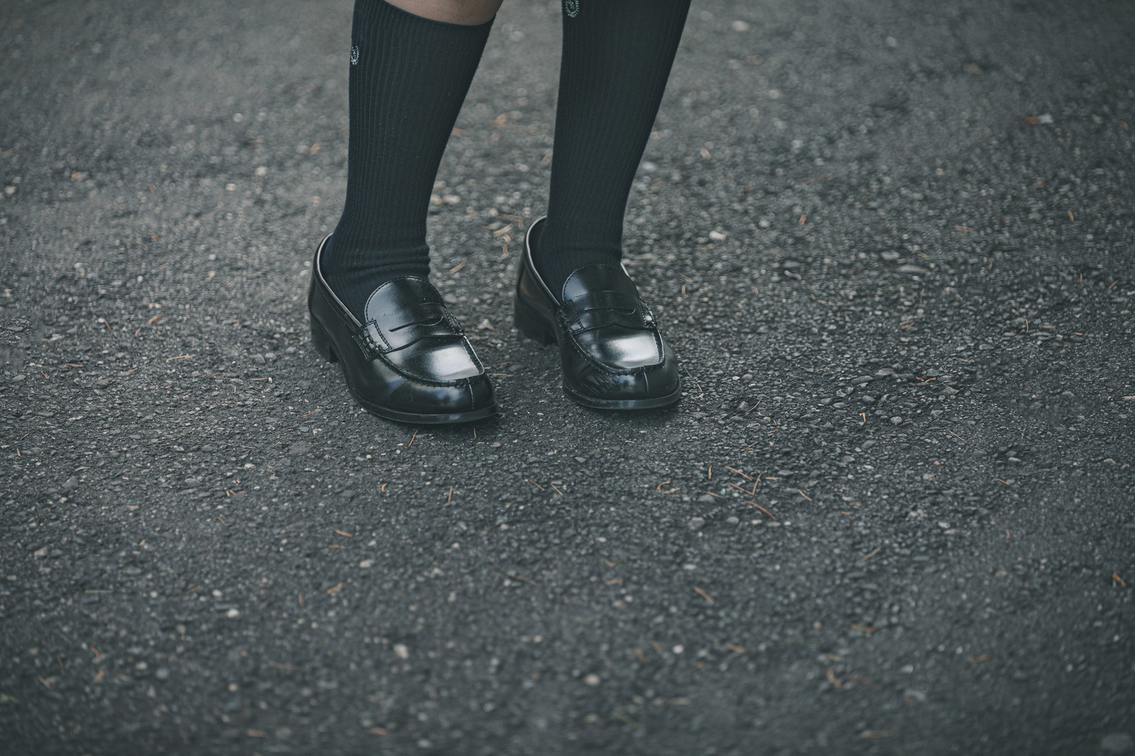 「ローファーを履いた足元」の写真[モデル:石投げて美奈代]