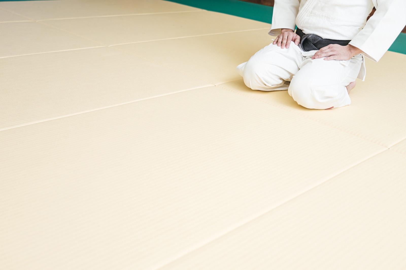 「畳の上で正座待機」の写真[モデル:大川竜弥]
