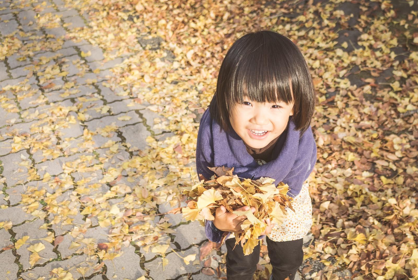 「落ち葉を沢山ひろったよ!」の写真[モデル:あんじゅ]