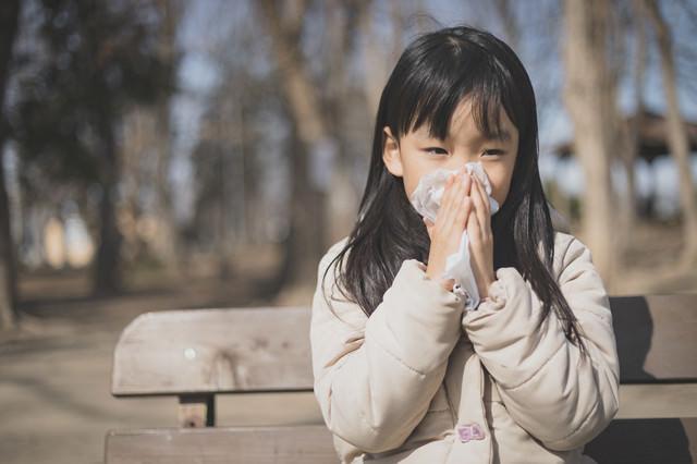 花粉症の時期、ティッシュで鼻をかむ女の子の写真