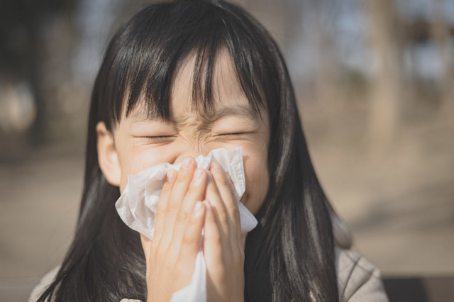 鼻をかむ子供「チーン」の写真