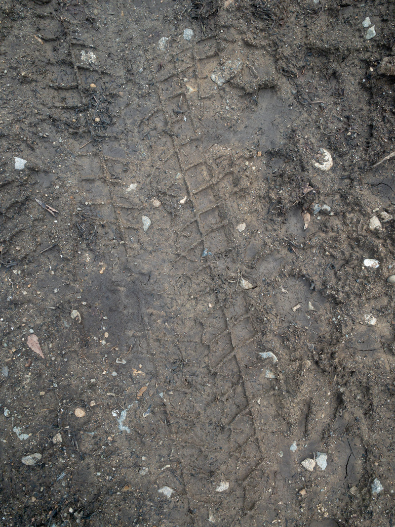 「濡れた地面に残るタイヤ痕のテクスチャ」の写真