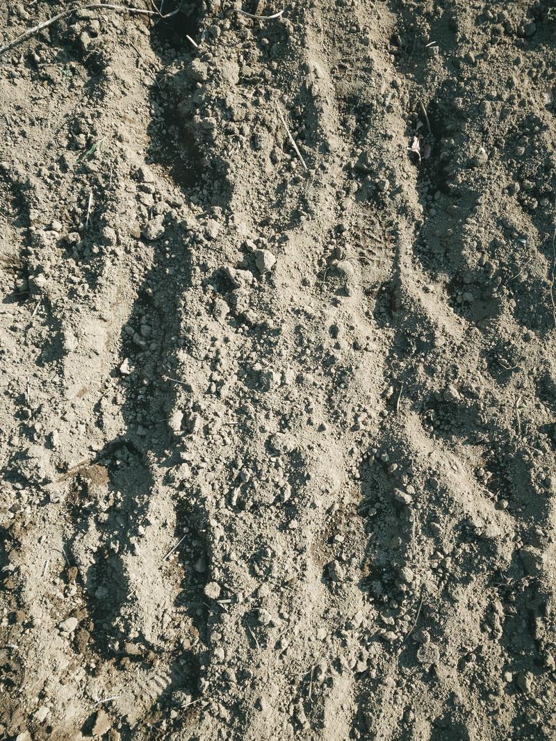 「耕した畑の土と足跡(テクスチャ)」の写真