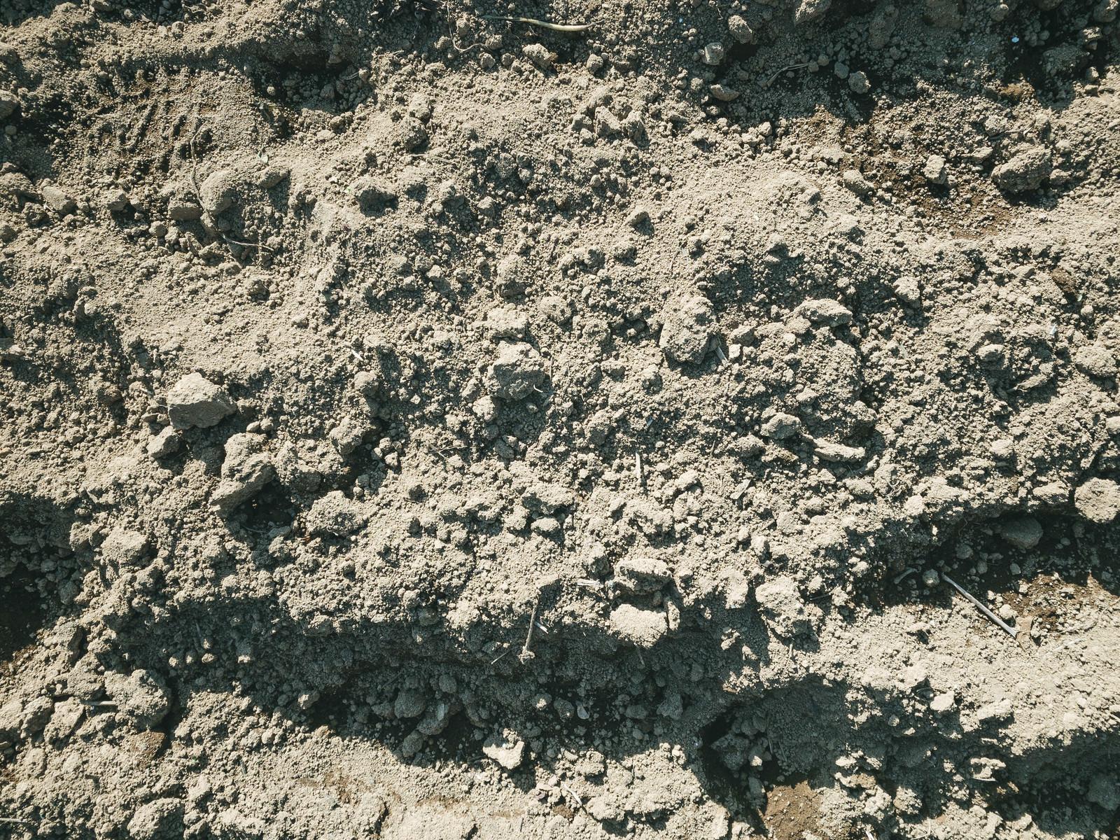 「表面が乾燥した地面に残る足跡(テクスチャ)」の写真