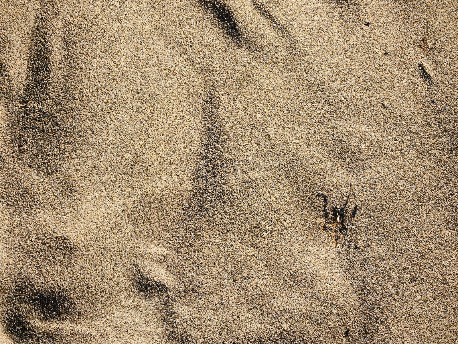 「川原の砂(テクスチャ)」の写真
