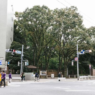 「駒込(六義園前交差点)」の写真素材