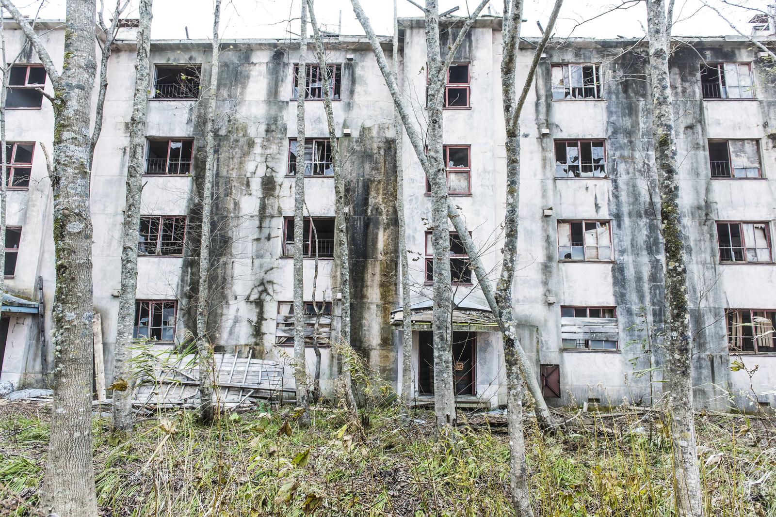 「炭鉱住宅の廃墟」の写真