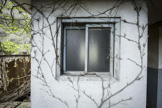蔦と不気味な窓、ホラーっぽい建物の写真