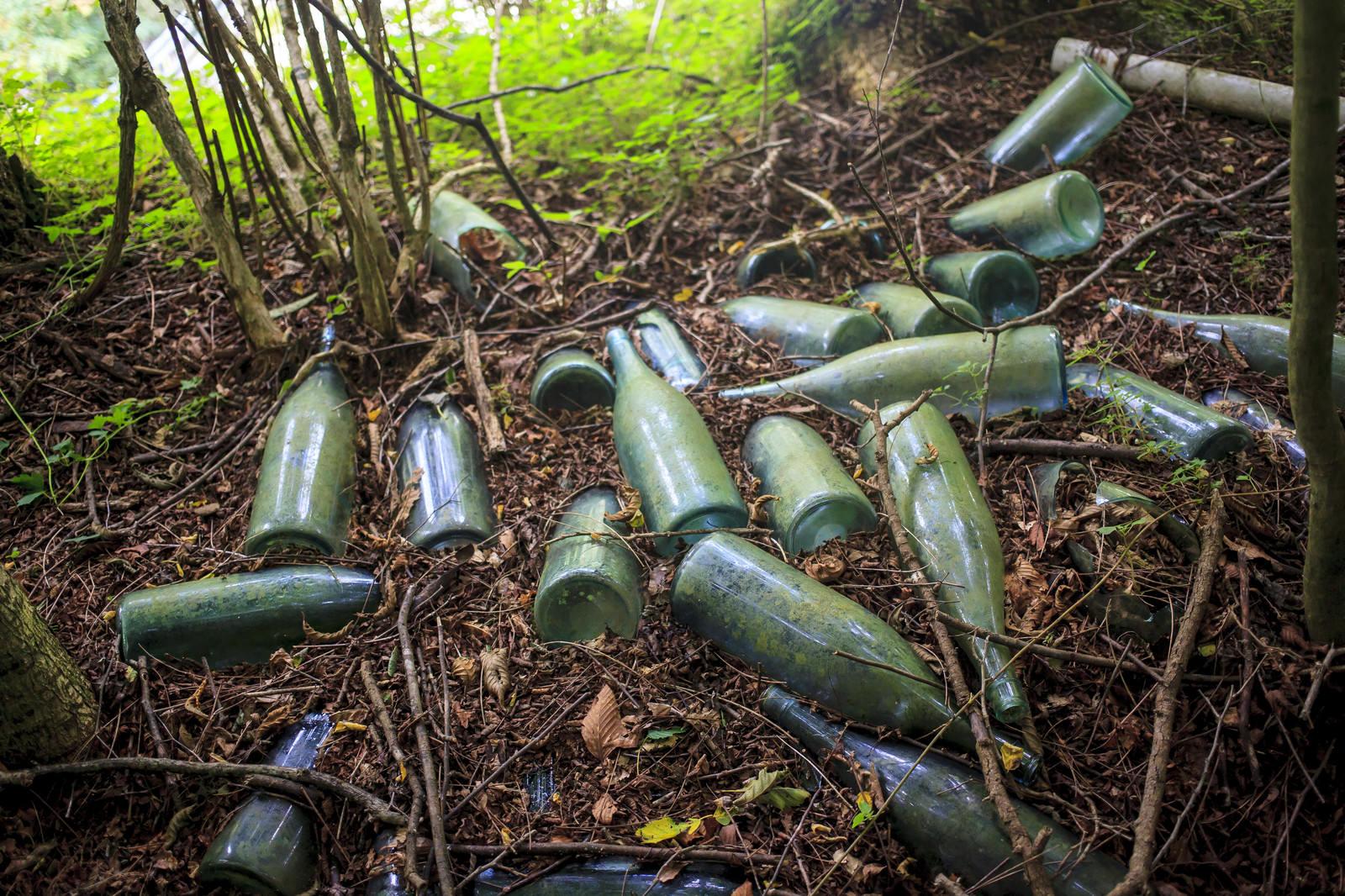 「山奥に捨てられた瓶」の写真