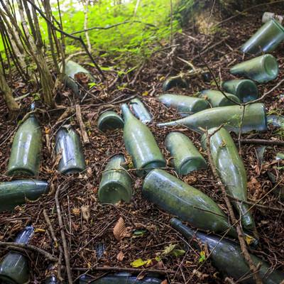 「山奥に捨てられた瓶」の写真素材