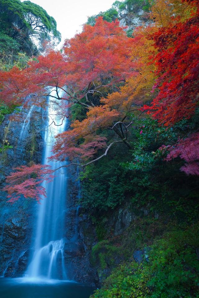 渓流の滝と黄葉の季節の写真